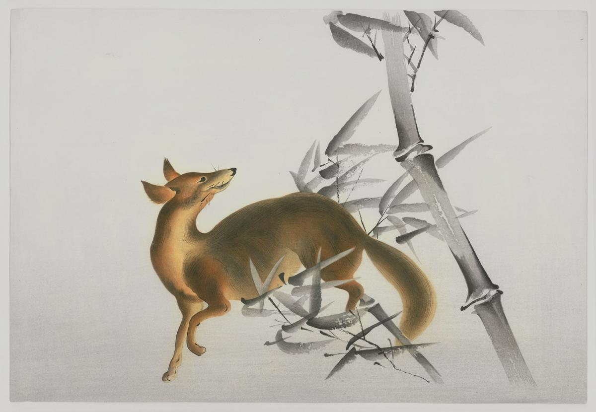 Fox in Bamboo