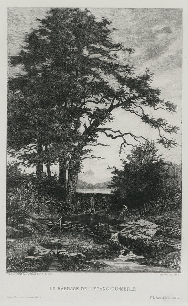 Le Barrage de L'etang du Merle