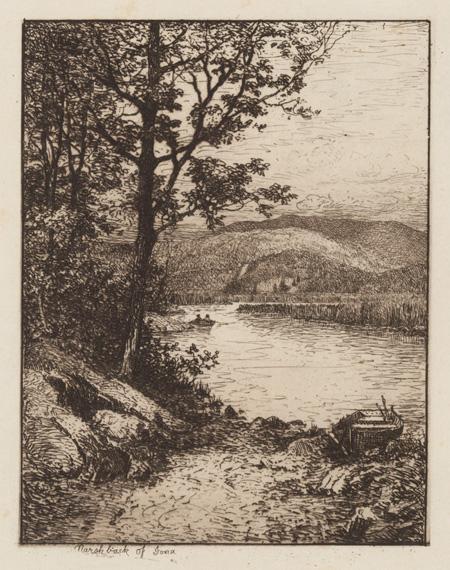 Marsh-Back of Iona