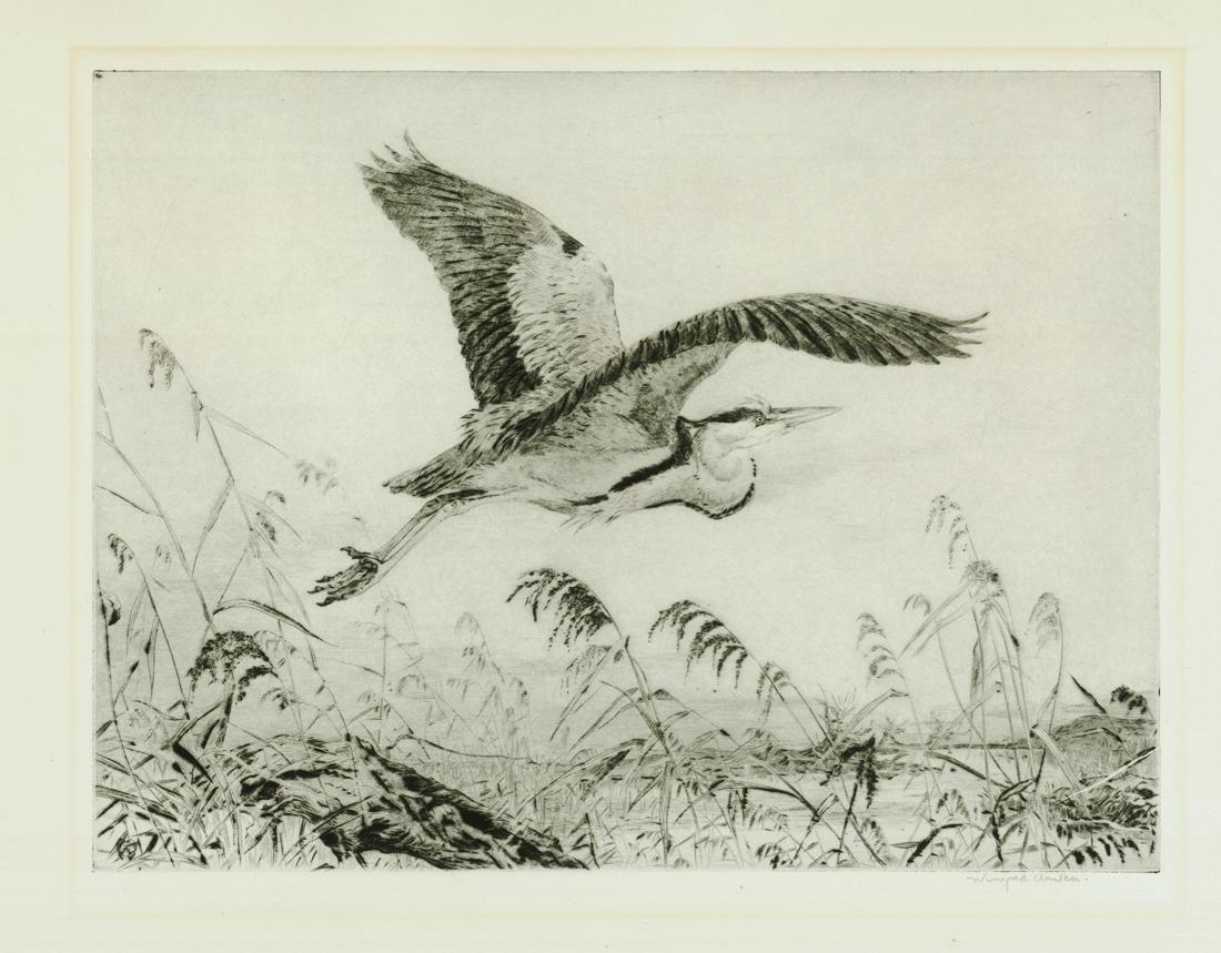 Heron Making Off