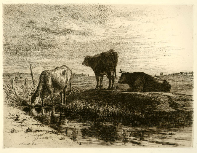 The Three Cows