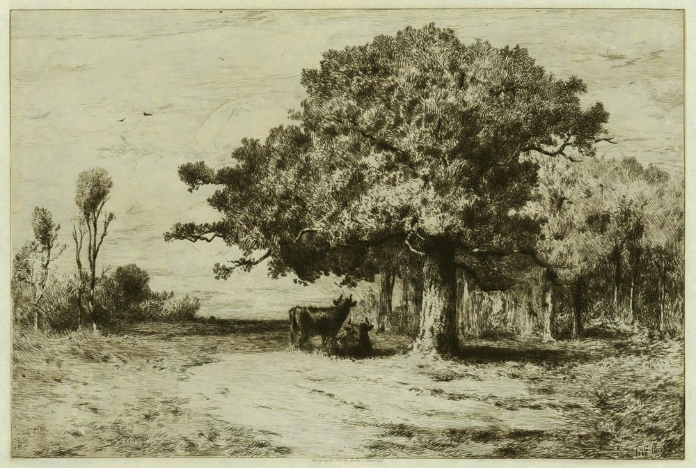 A Woodland Pasture