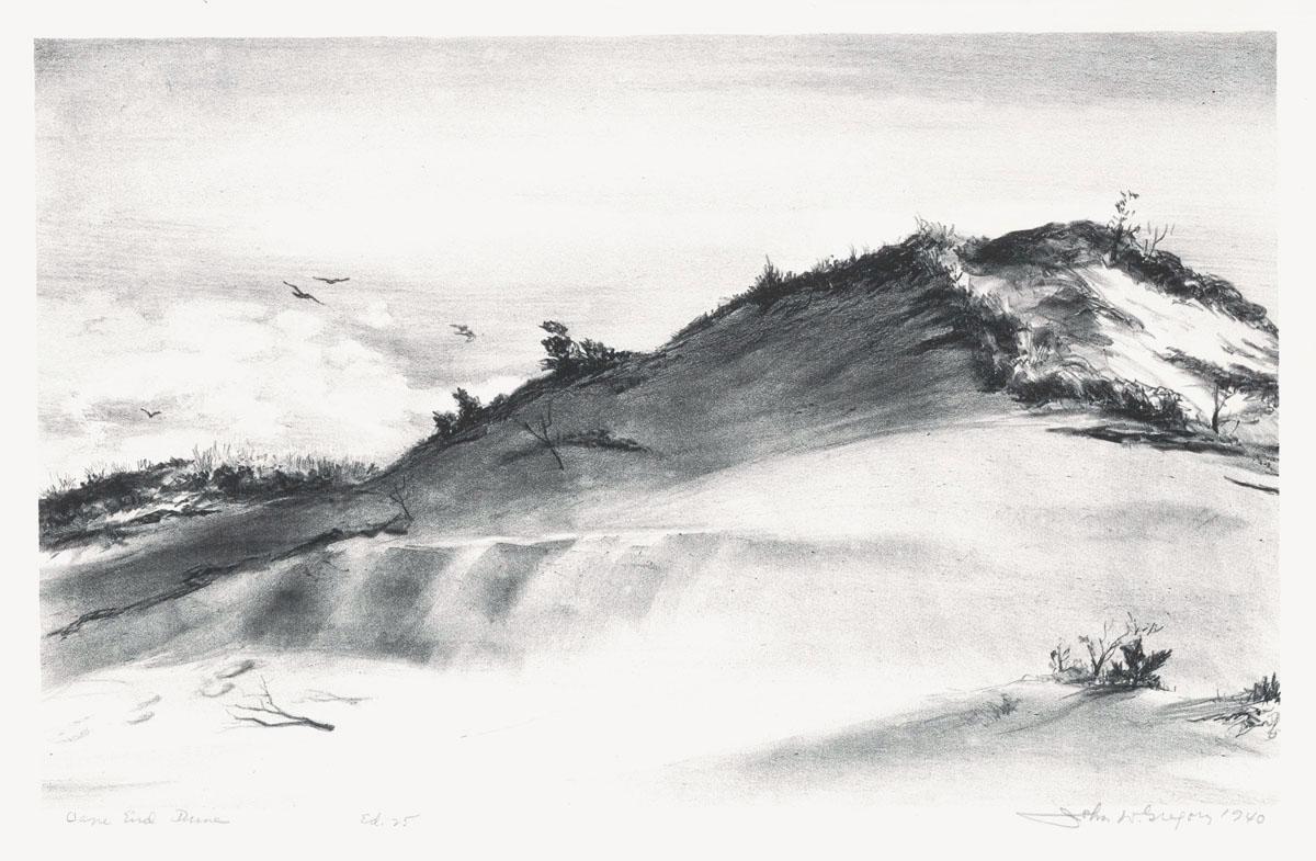 Cape End Dune