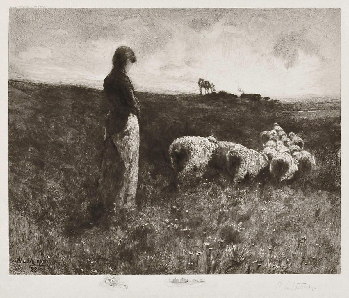 Shepherdess at Sunset