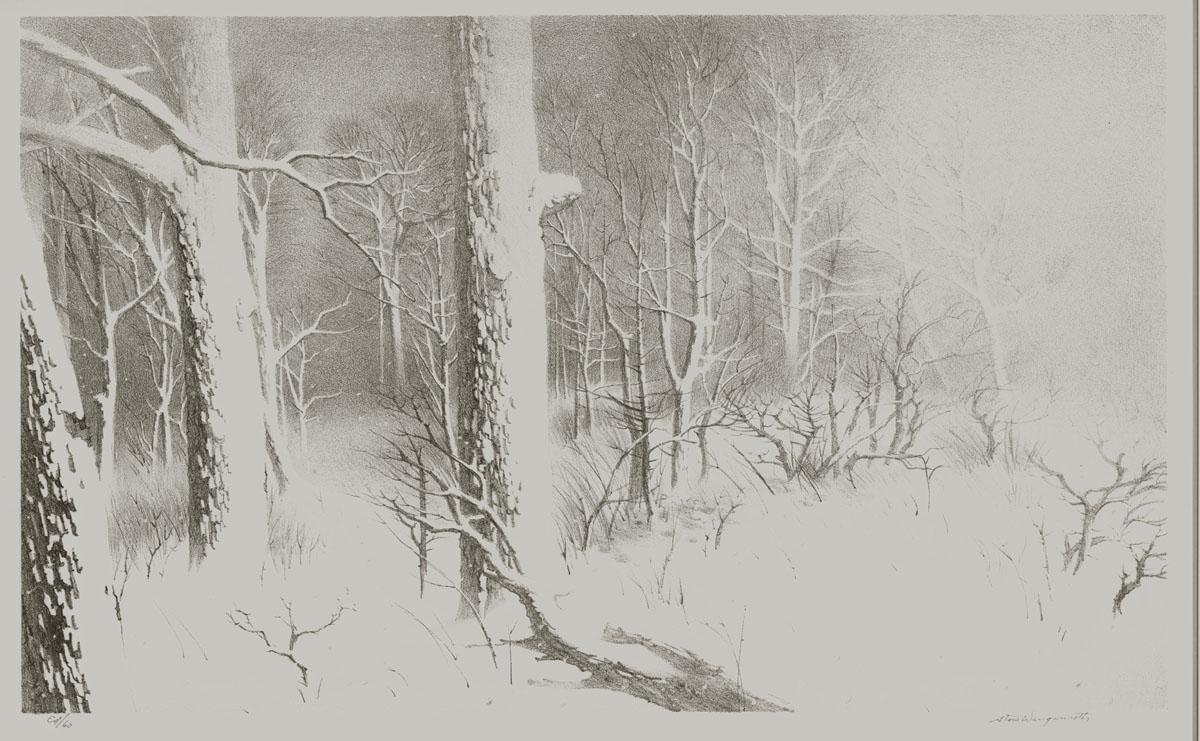 Winter,Greenport New York